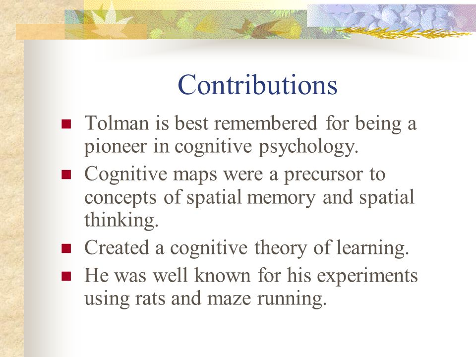 Contributions Tolman is best remembered for being a pioneer in cognitive psychology.