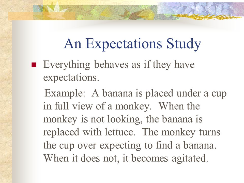 An Expectations Study Everything behaves as if they have expectations.