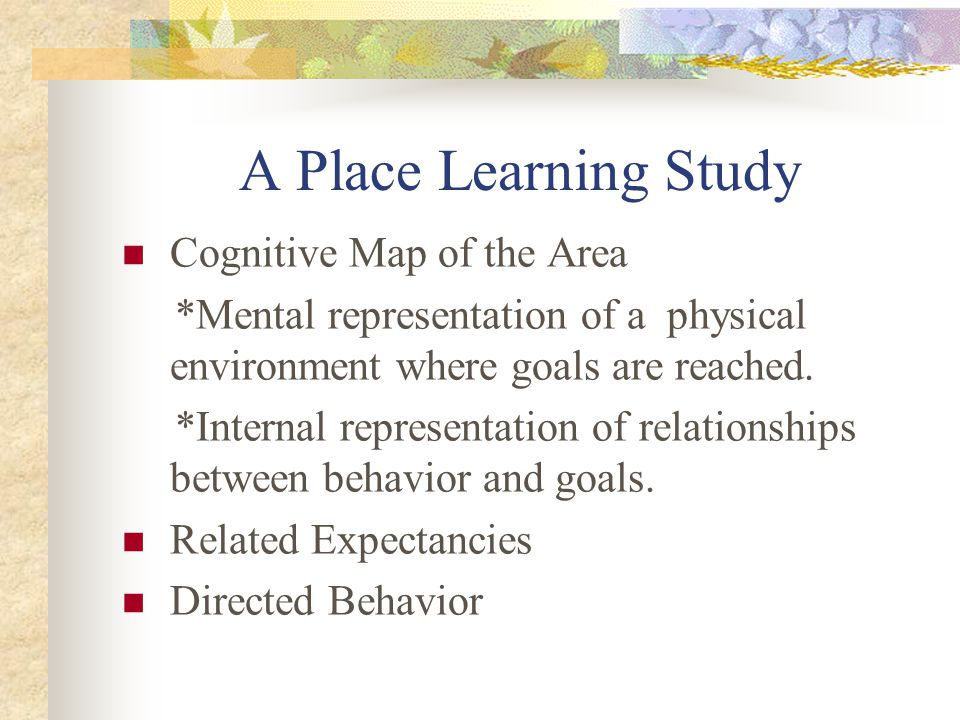 A Place Learning Study Cognitive Map of the Area