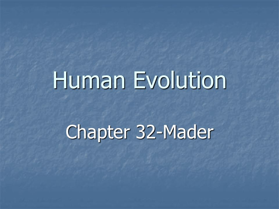 Human Evolution Chapter 32-Mader