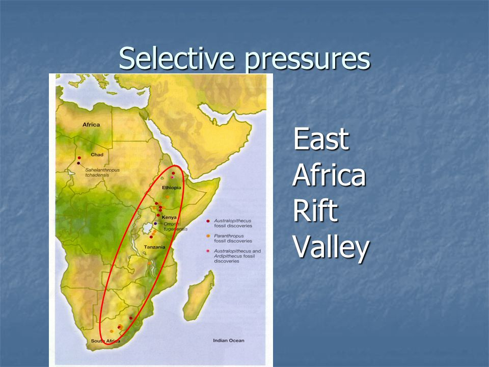 Selective pressures East Africa Rift Valley