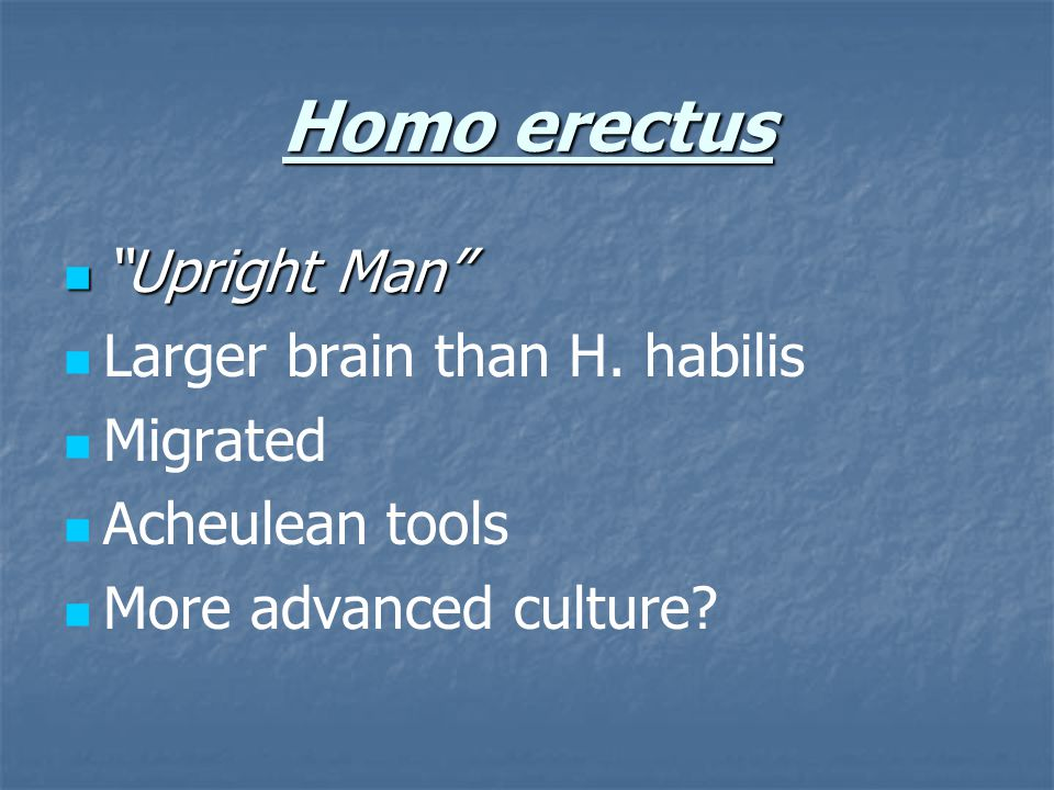 Homo erectus Upright Man Larger brain than H. habilis Migrated