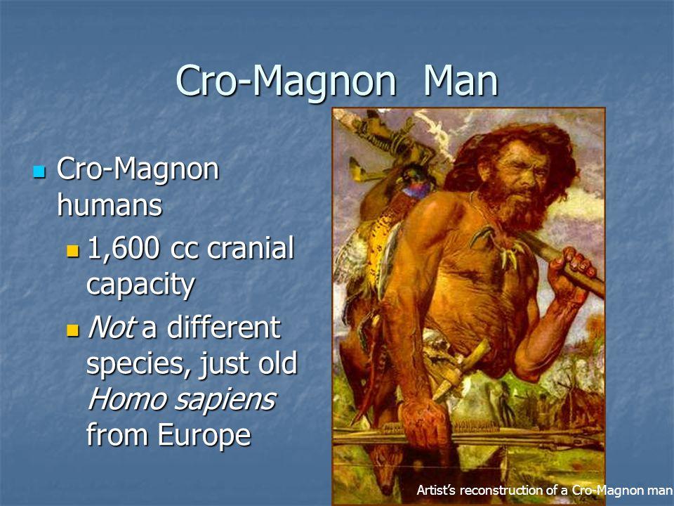 Cro-Magnon Man Cro-Magnon humans 1,600 cc cranial capacity