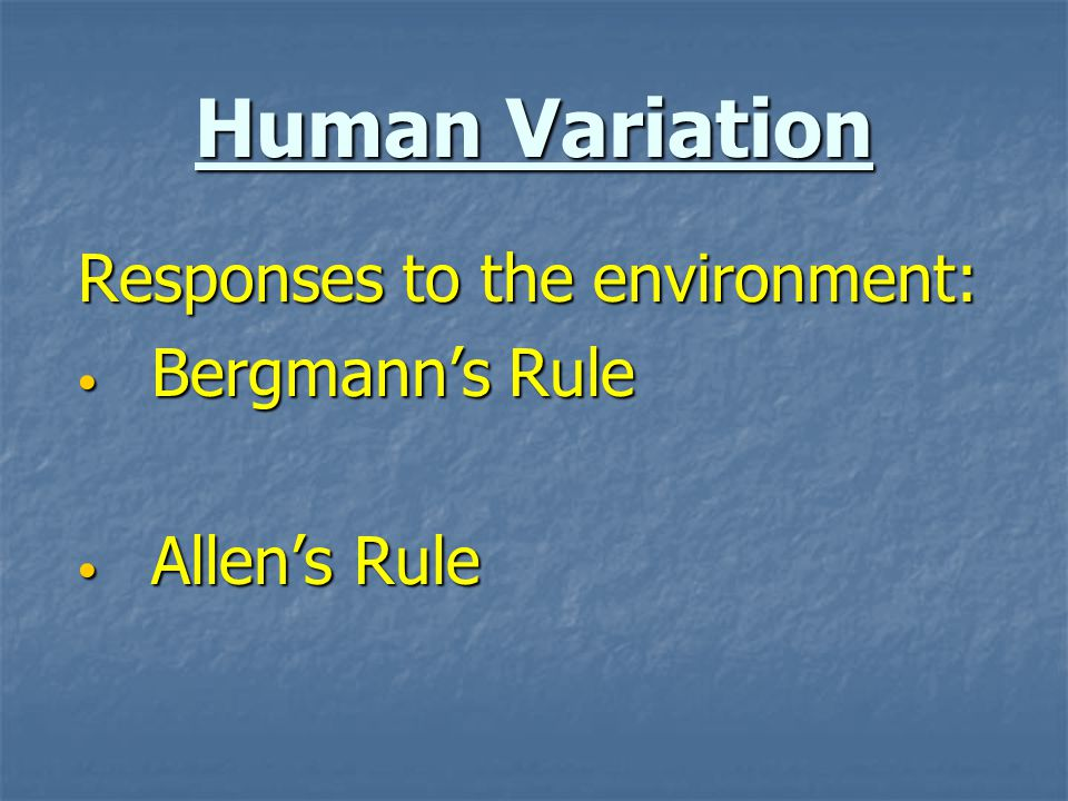 Human Variation Responses to the environment: Bergmann's Rule