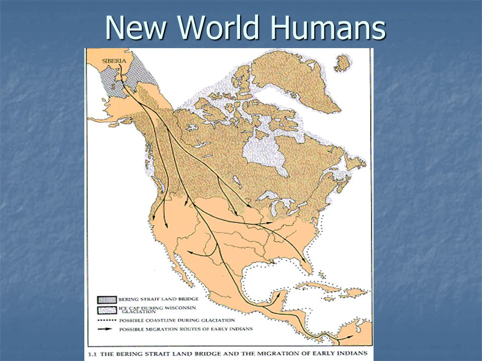 New World Humans