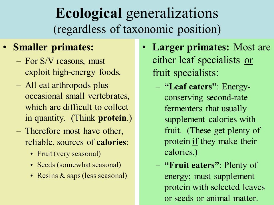 Ecological generalizations (regardless of taxonomic position)