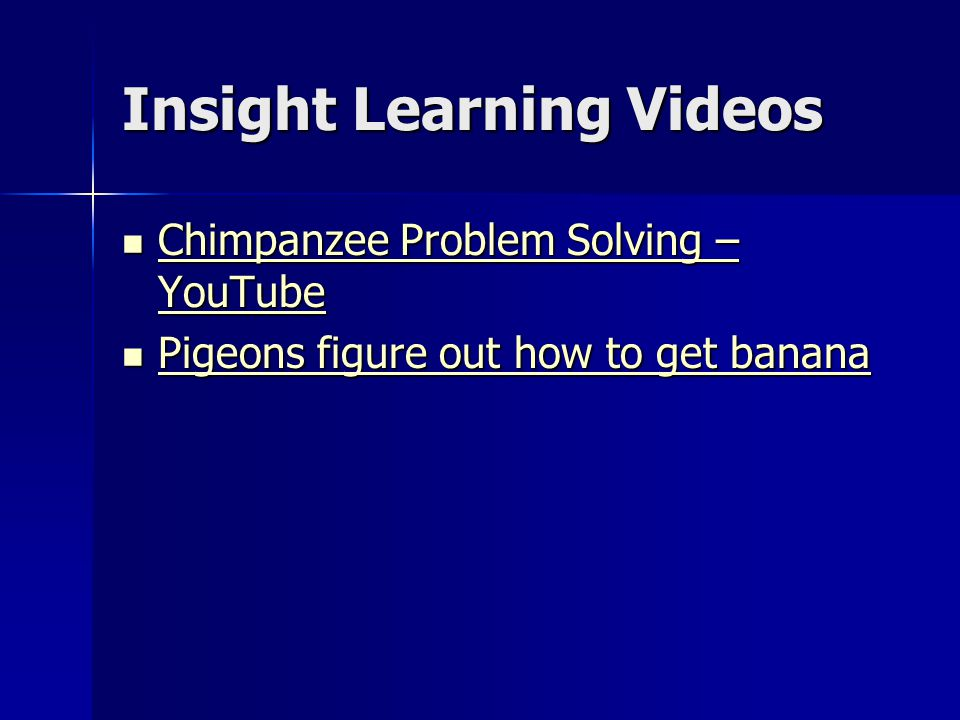 Insight Learning Videos