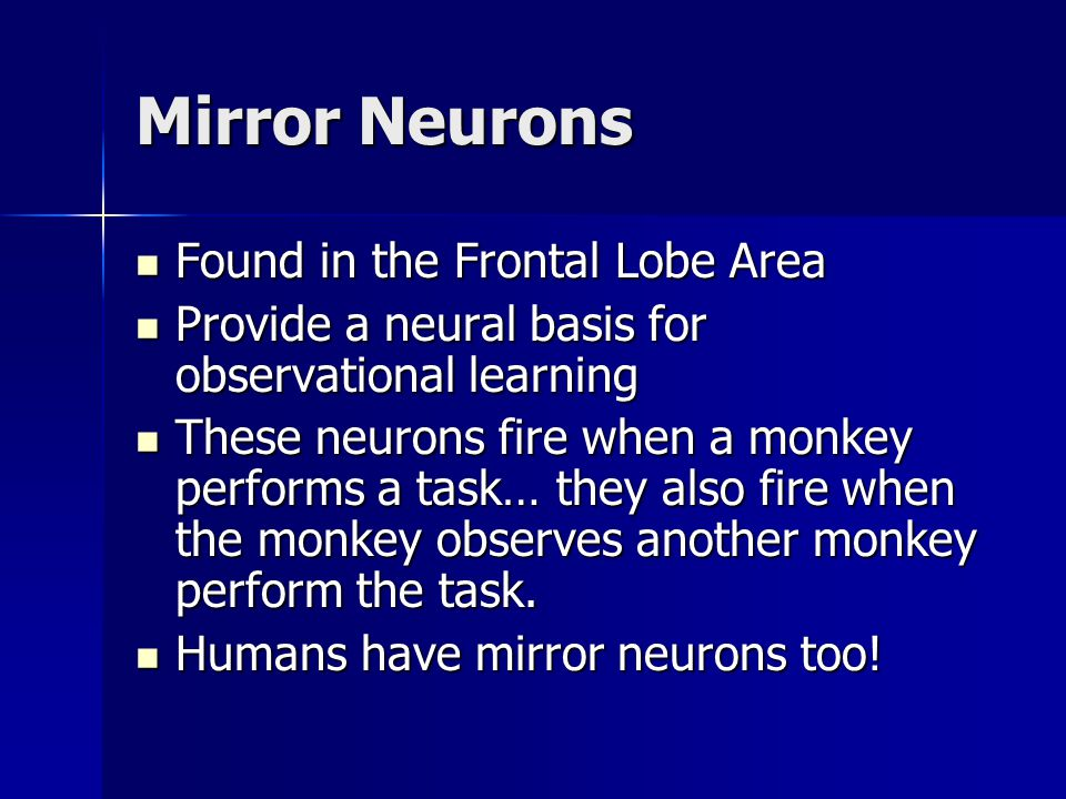 Mirror Neurons Found in the Frontal Lobe Area