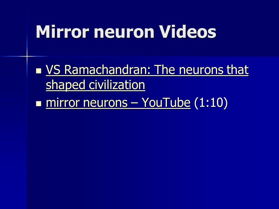 Mirror neuron Videos VS Ramachandran: The neurons that shaped civilization.