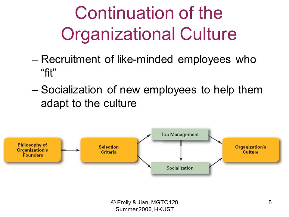 Continuation of the Organizational Culture