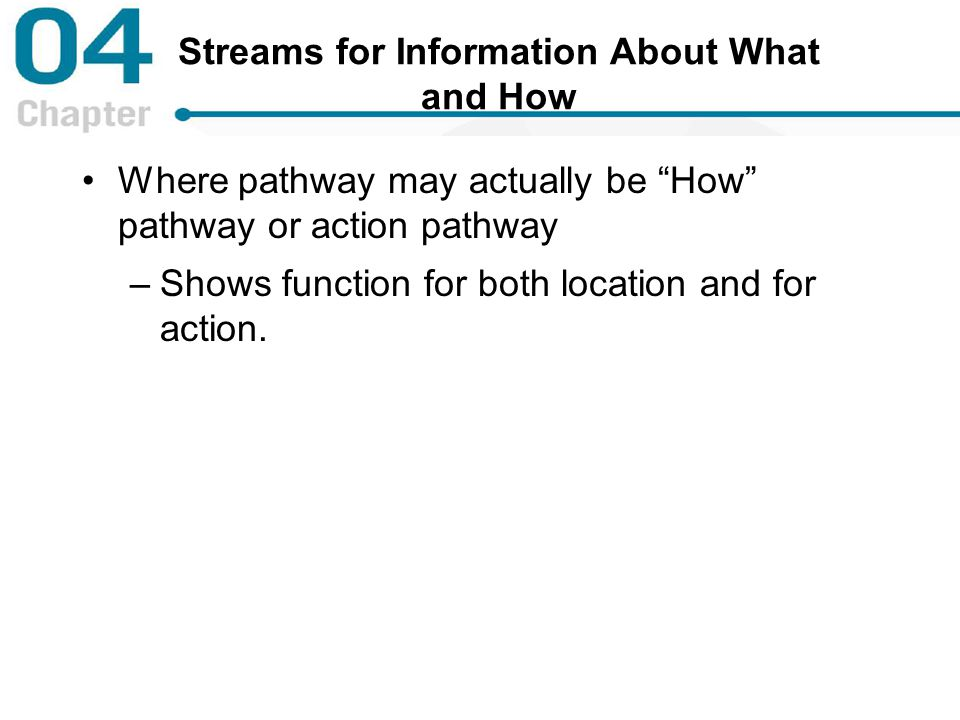 Streams for Information About What and How