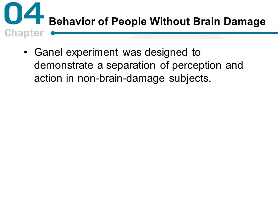 Behavior of People Without Brain Damage