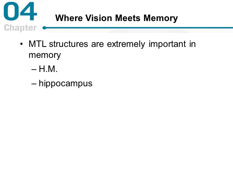 Where Vision Meets Memory