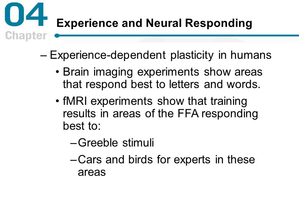 Experience and Neural Responding