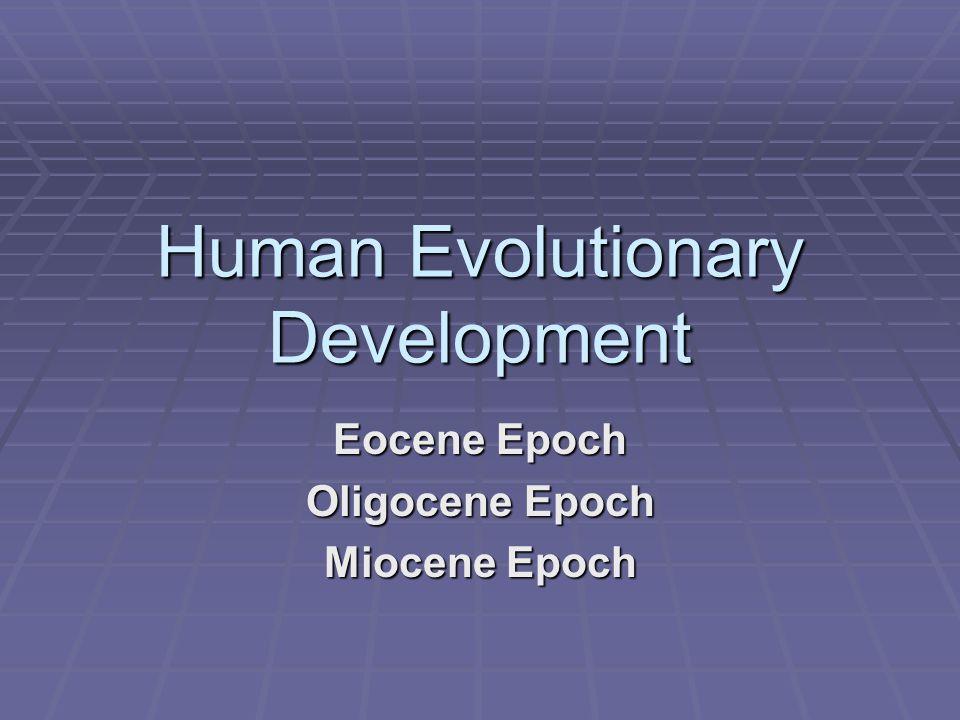 Human Evolutionary Development