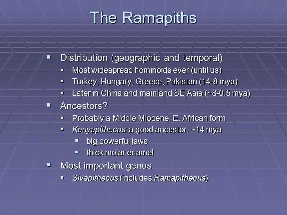 The Ramapiths Distribution (geographic and temporal) Ancestors