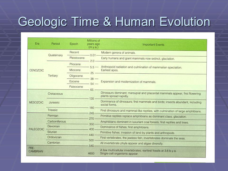 Geologic Time & Human Evolution