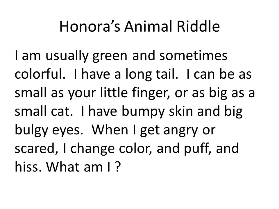 Honora's Animal Riddle