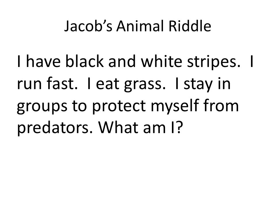 Jacob's Animal Riddle I have black and white stripes.