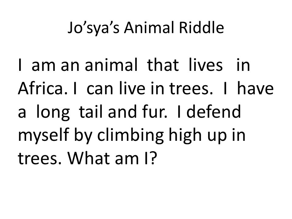 Jo'sya's Animal Riddle