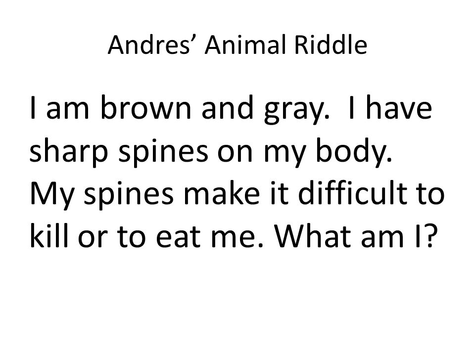 Andres' Animal Riddle I am brown and gray. I have sharp spines on my body.