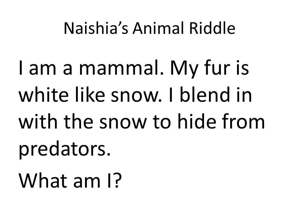 Naishia's Animal Riddle