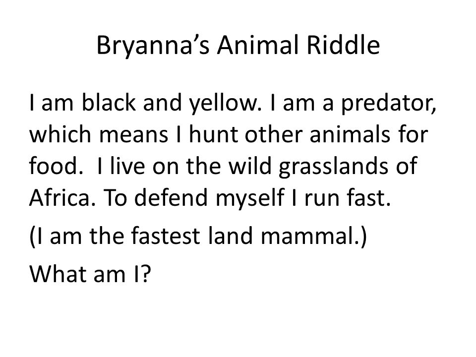 Bryanna's Animal Riddle