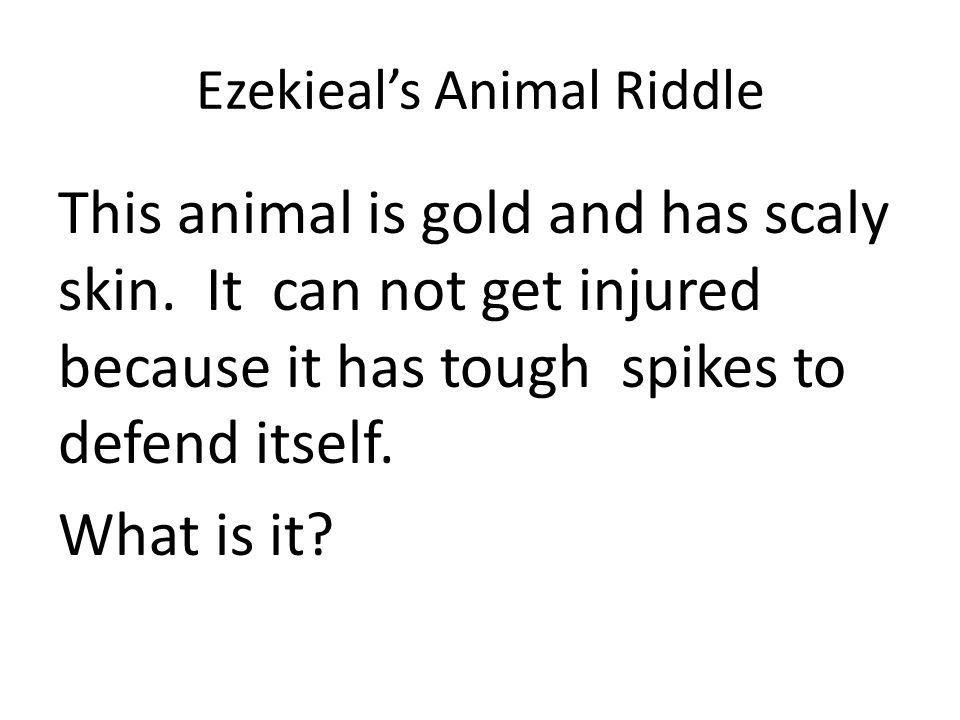 Ezekieal's Animal Riddle