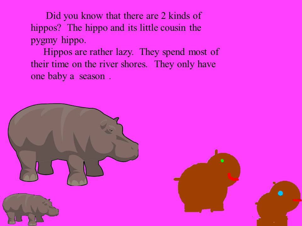 Did you know that there are 2 kinds of hippos