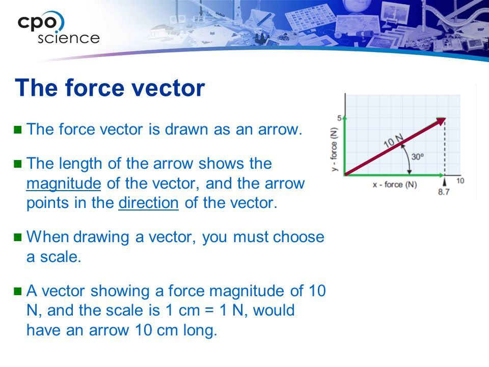 The force vector The force vector is drawn as an arrow.