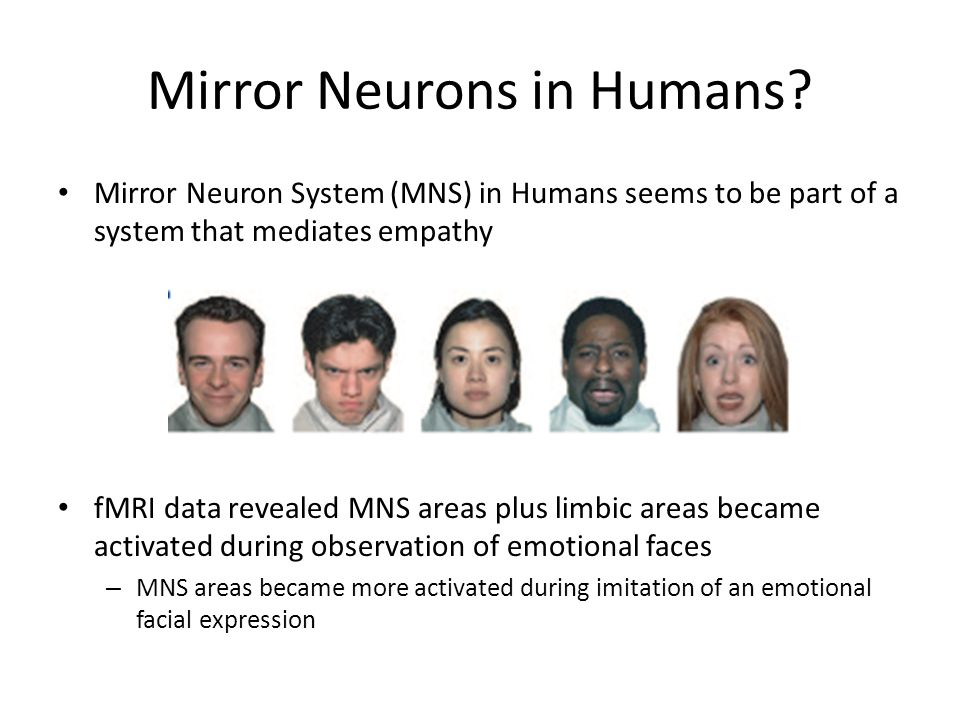 Mirror Neurons in Humans
