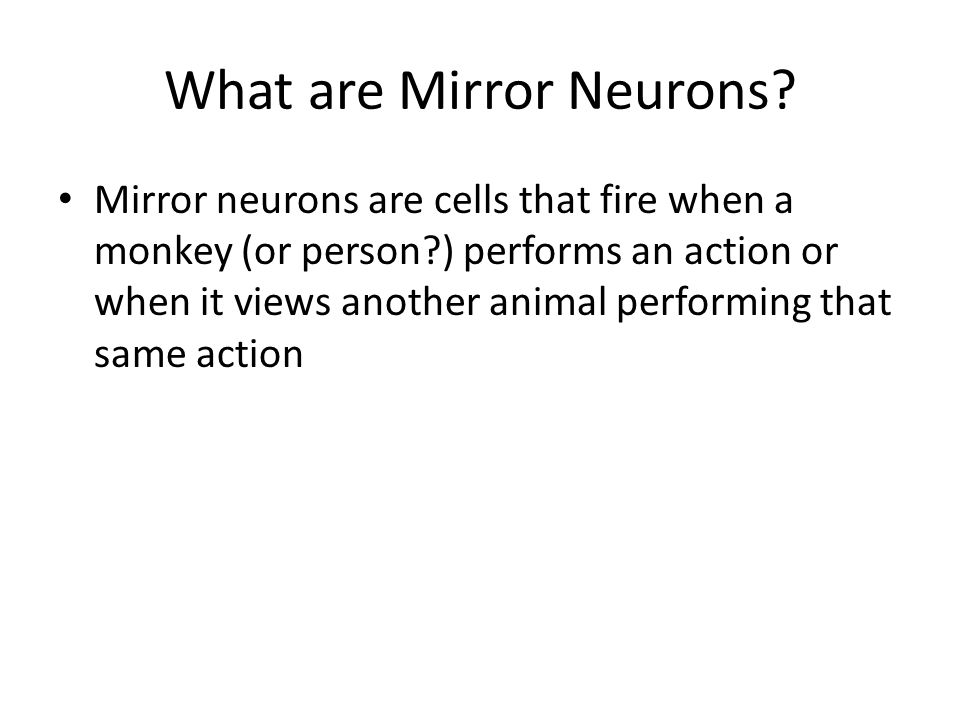 What are Mirror Neurons