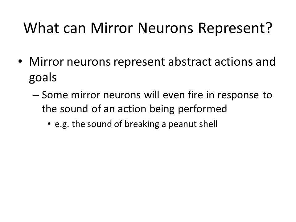 What can Mirror Neurons Represent