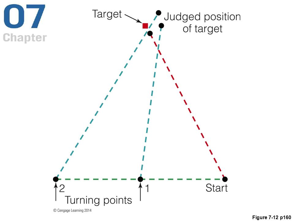 Figure 7.12 The results of a blind walking experiment (Philbeck et al., 1997). Participants looked at the target, which was 6 meters from the starting point, then closed their eyes and begin walking to the left. They turned either at point 1 or 2, keeping their eyes closed the whole time, and continued walking until they thought they had reached the target.