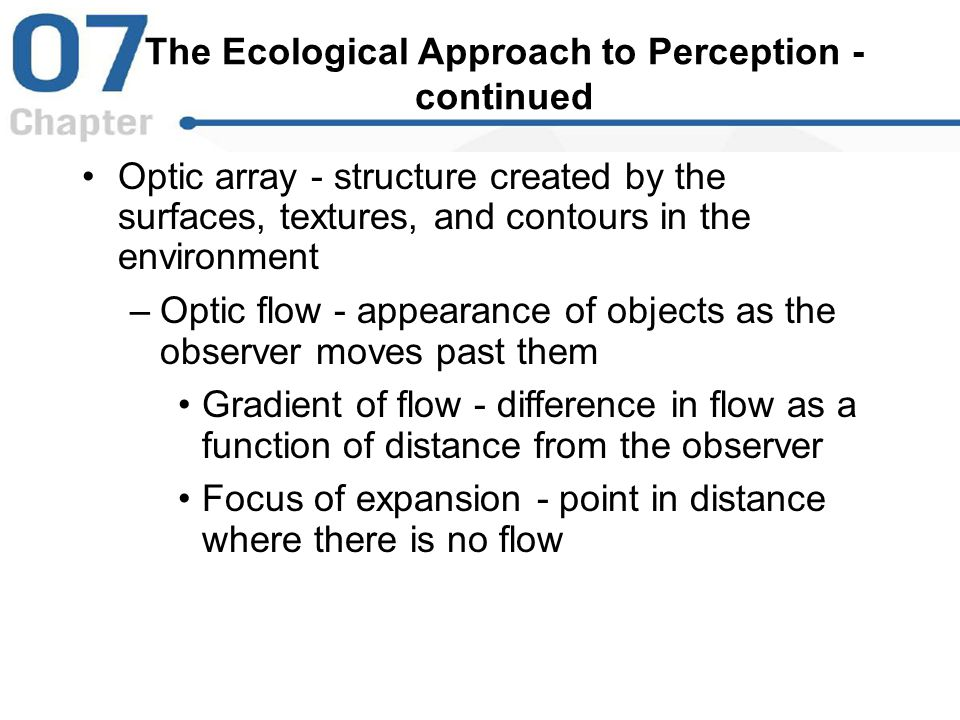 The Ecological Approach to Perception - continued