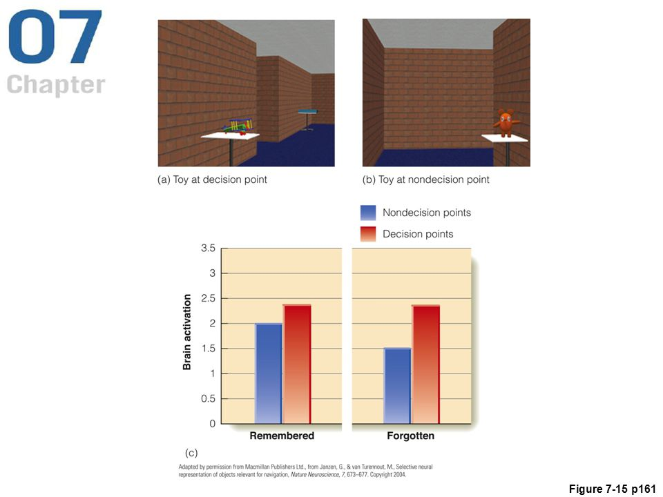 Figure 7.15 (a & b) Two locations in the virtual museum viewed by Janzen and van Turennout's (2004) observers. (c) Brain activation during the recognition test for objects that had been located at decision points (red bars) and non-decision points (blue bars). Notice that brain activation was greater for decision-point objects even if they weren't remembered.