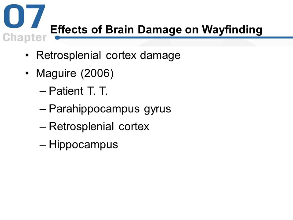Effects of Brain Damage on Wayfinding