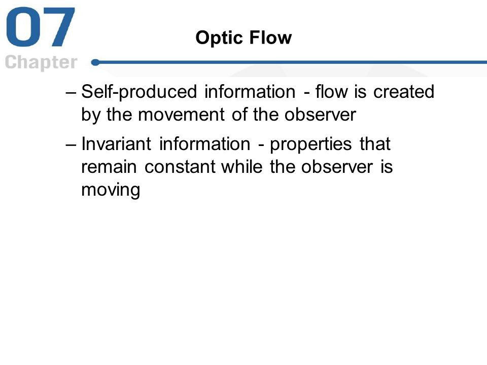 Optic Flow Self-produced information - flow is created by the movement of the observer.