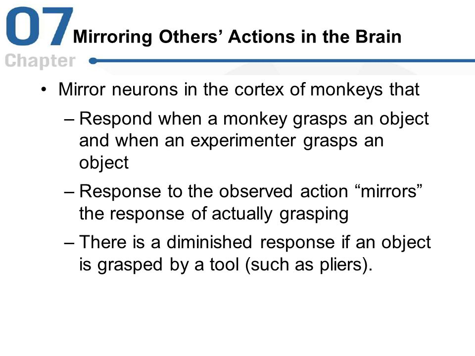 Mirroring Others' Actions in the Brain