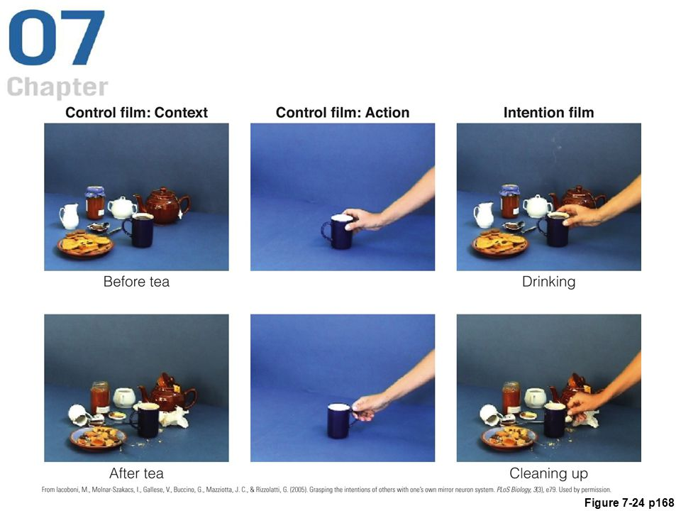 Figure 7.24 Images from the Context, Action, and Intention film clips viewed by Iacoboni and coworkers' (2005) subjects. See text for details.
