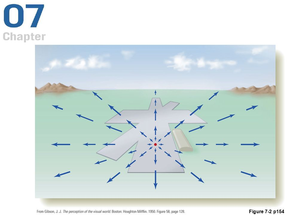 Figure 7. 2 Optic flow created by an airplane coming in for a landing