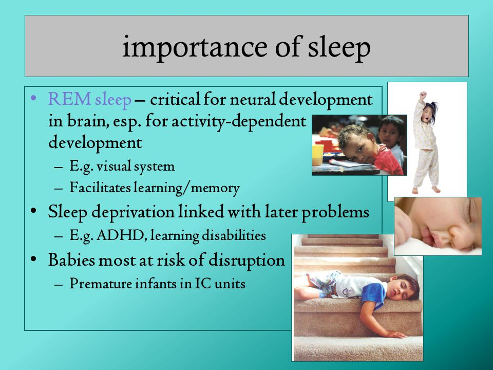 importance of sleep REM sleep – critical for neural development in brain, esp. for activity-dependent development.