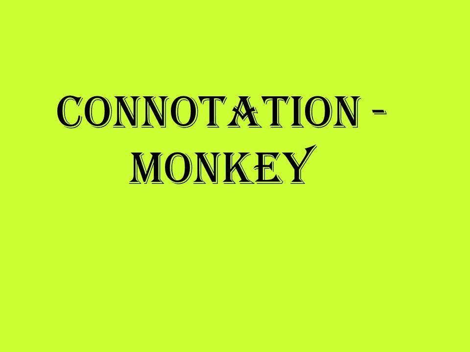 Connotation - Monkey