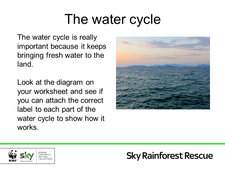 The water cycle The water cycle is really important because it keeps bringing fresh water to the land.