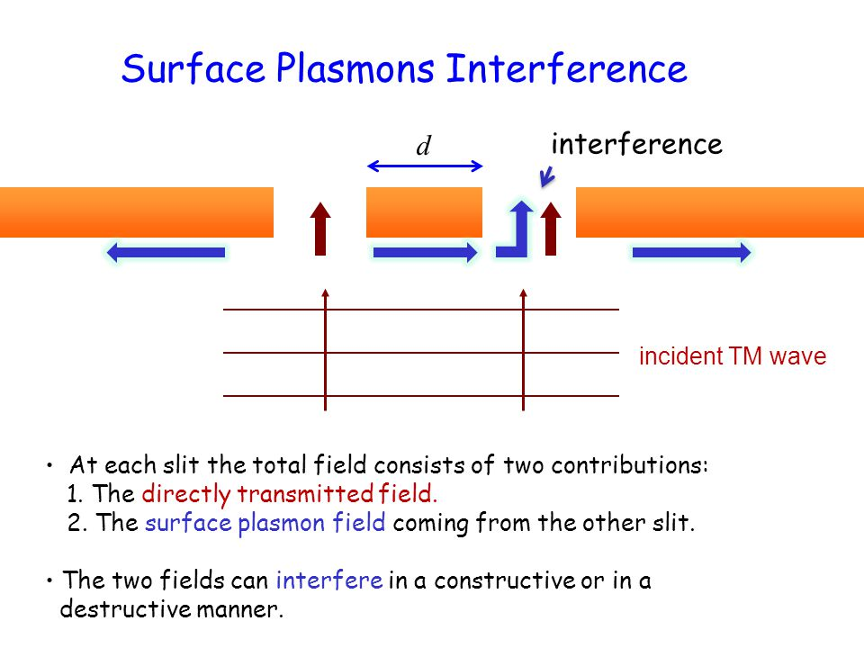 Surface Plasmons Interference