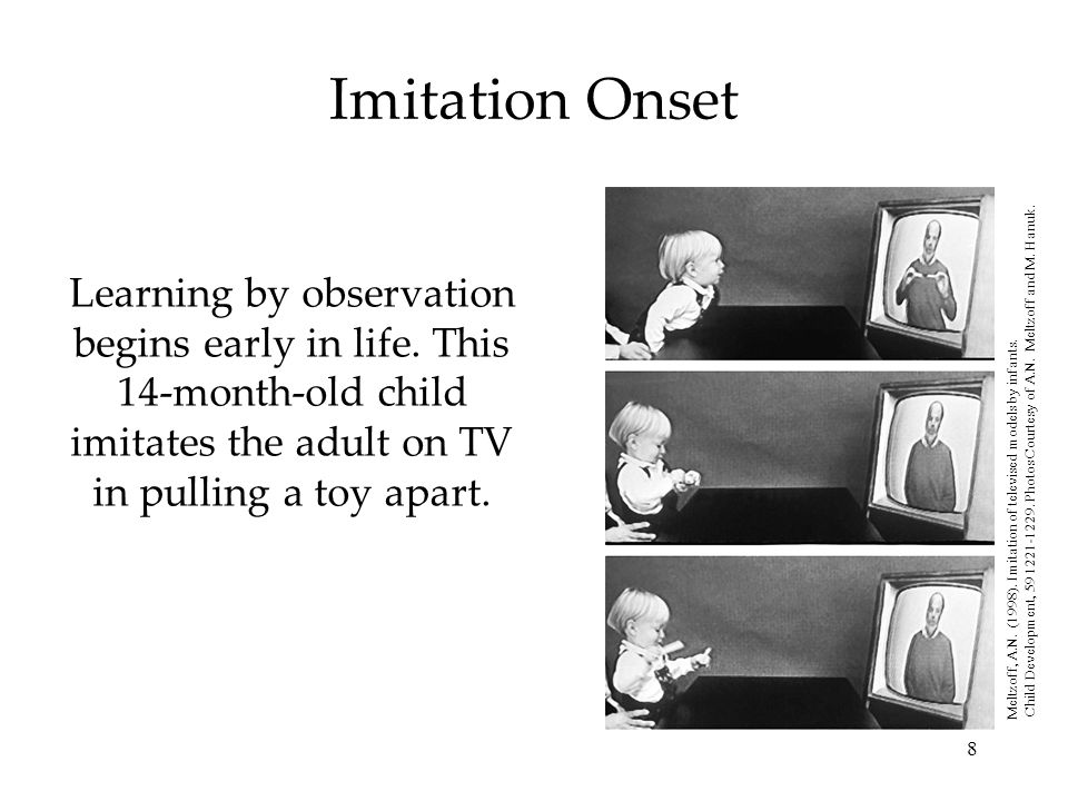 Imitation Onset Learning by observation begins early in life. This 14-month-old child imitates the adult on TV in pulling a toy apart.