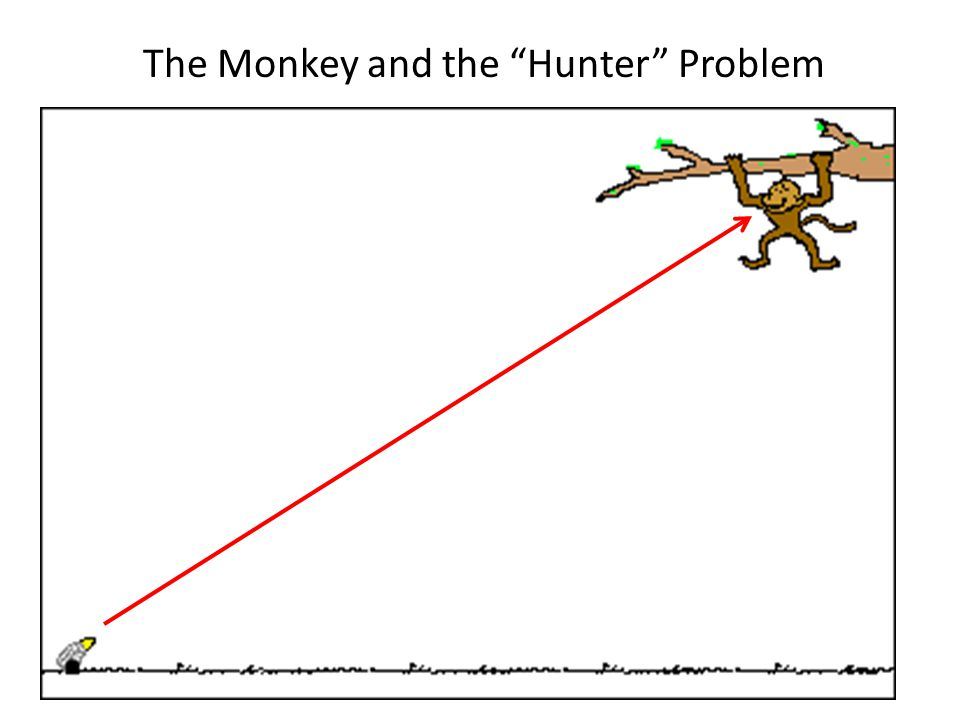 The Monkey and the Hunter Problem