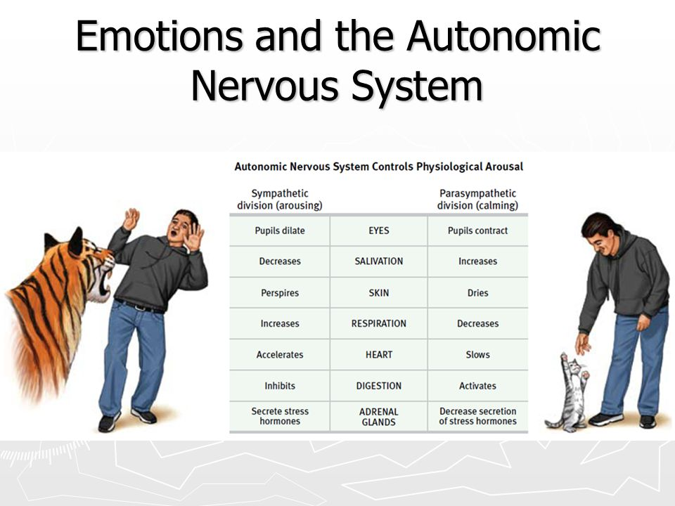 Emotions and the Autonomic Nervous System