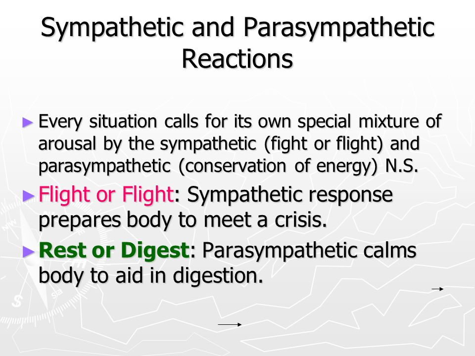 Sympathetic and Parasympathetic Reactions
