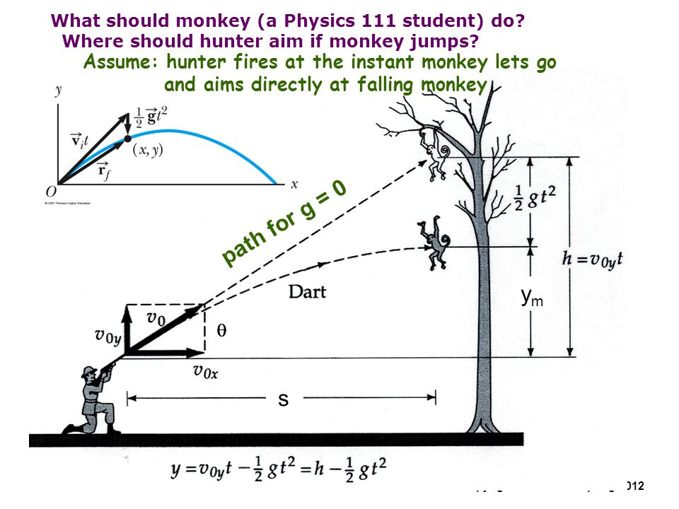 What should monkey (a Physics 111 student) do